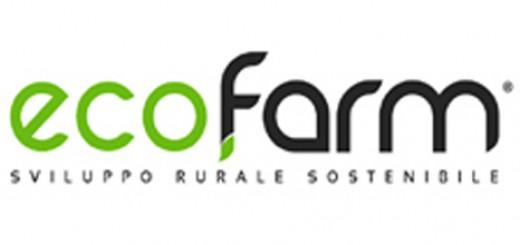 tre_ruote_ebbro_ecofarm