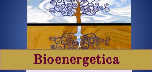 Bioenergetica_001