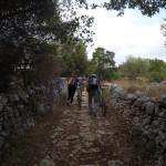 Ciclo Escursione